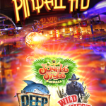 Pinball HD for iPad App Review