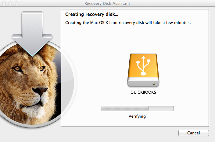 Lion Recovery USB Stick