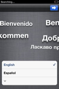iPhone setup language