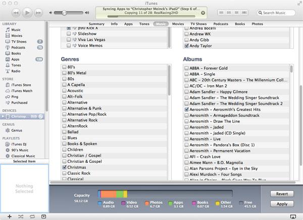 Playlists iTunes iPad