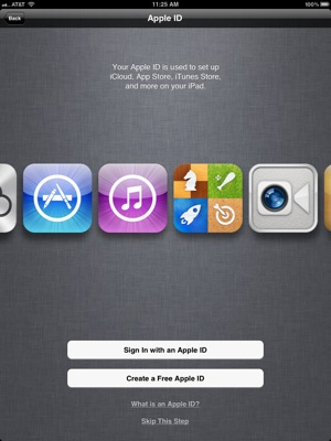 Apple ID setup
