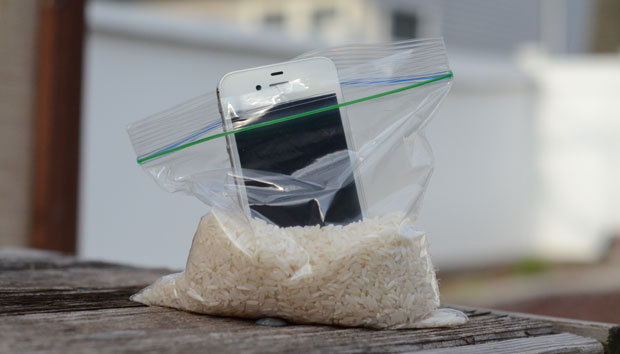 putting iphone in rice what to do if you drop your iphone in water 15920