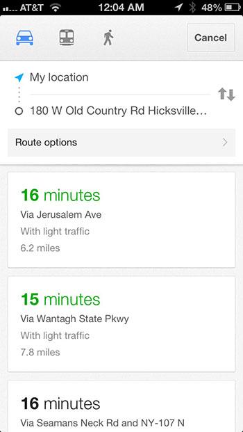 Google Maps options