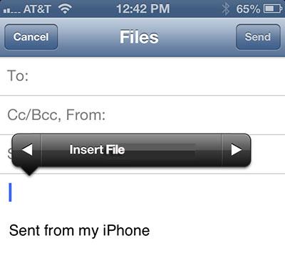 Insert file iOS