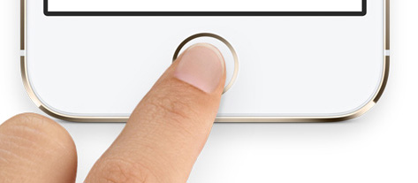 Home button surround