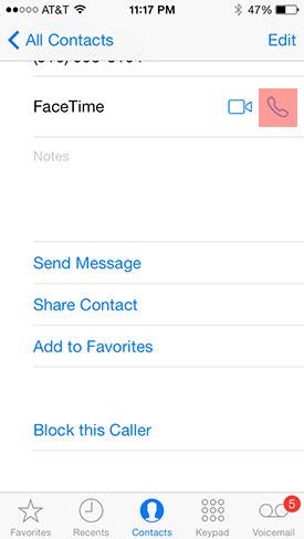 FaceTime audio call iOS 7